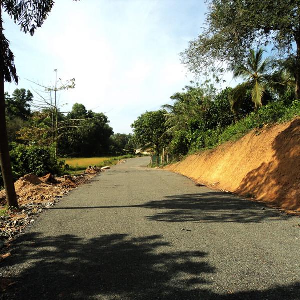Midigama Biomass – 1